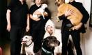 I Melvins ed i loro amici a quattro zampe!