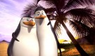 Kico-On-Holiday-penguins-of-madagascar-11694823-1311-1080